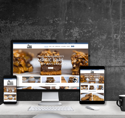 e-commerce responsive wordpress website design madison wi