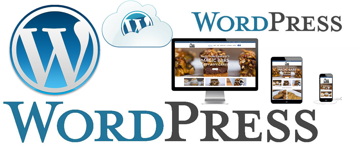 wordpress website design madison wi